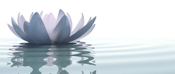 Circuito Zen + Masaje de 50'